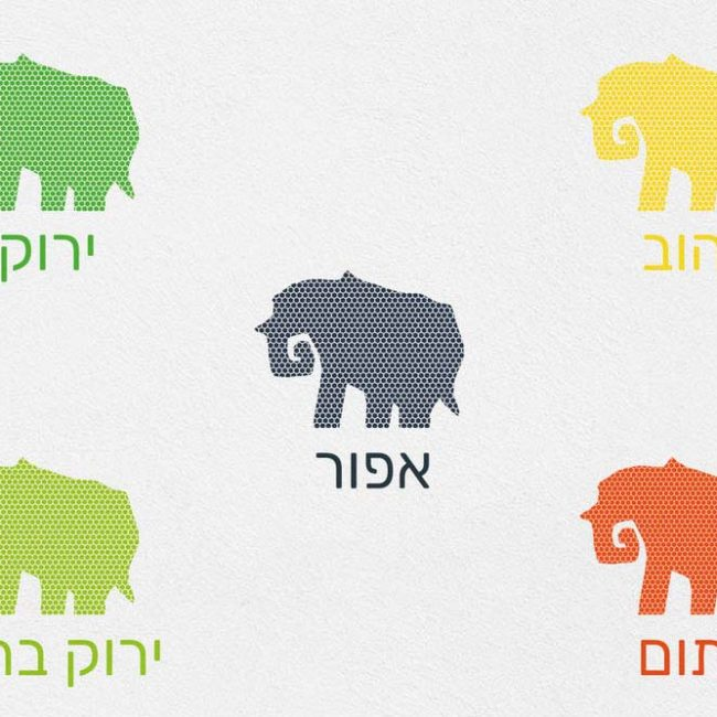 מדבקות קיר פילים